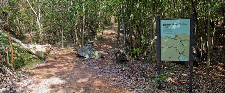 Johnny Horn Trail St John US Virgin Islands National Park