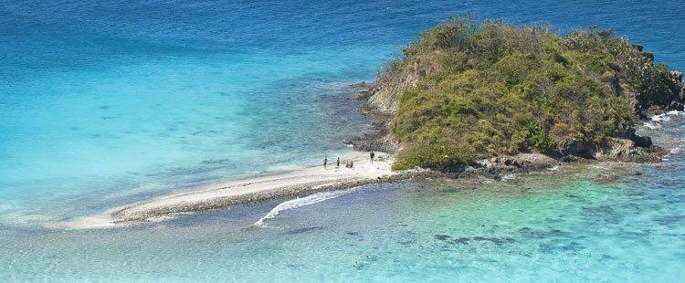 Waterlemon Cay, St john island snorkeling information
